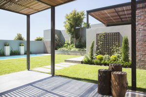 Large sunny modern backyard